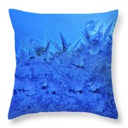 Frost On A Windowpane Throw Pillow