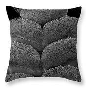 Gecko Foot Pads Throw Pillow