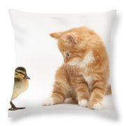 Ginger Kitten And Mallard Duckling Throw Pillow