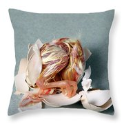 Hatching Chicken Throw Pillow