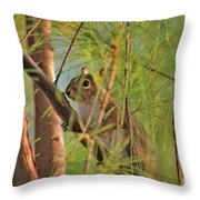 4- Incognito Throw Pillow