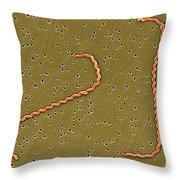 Leptospira Interrogans Throw Pillow