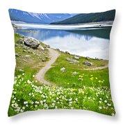 Mountain Lake In Jasper National Park Throw Pillow