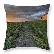 Newly Planted Crop Throw Pillow