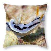 Nudibranch  Throw Pillow