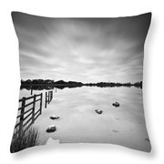 Penyfan Pond Throw Pillow