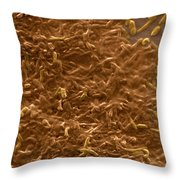 Potable Water Biofilm Throw Pillow