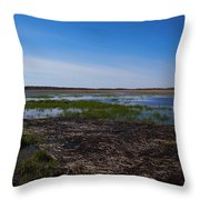 Puurijarvi Throw Pillow