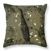 Rock Bass Throw Pillow