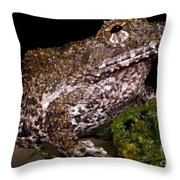 Rusty Robber Frog Throw Pillow