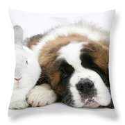 Saint Bernard Puppy With Rabbit Throw Pillow