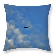 4- Seagull Throw Pillow