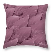 Shark Skin, Sem Throw Pillow