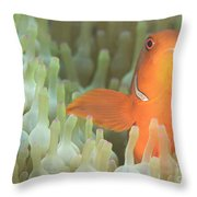 Spinecheek Anemonefish In Anemone Throw Pillow