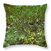Stoneface At Hossa With Stone Age Paintings Throw Pillow