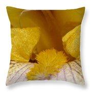 Tall Bearded Iris Named Butterfingers Throw Pillow