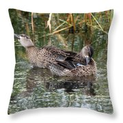 Teal Ducks Throw Pillow