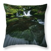 Tennessee, United States Of America Throw Pillow