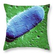 Tuberculosis Bacillum Throw Pillow