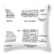 Types Of Epithelial Cells Throw Pillow