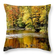 Williams River Autumn Throw Pillow