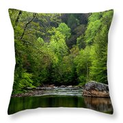 Williams River Scenic Backway Throw Pillow
