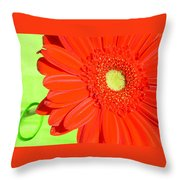 4005-002 Throw Pillow