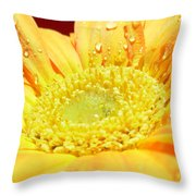 4174 Throw Pillow