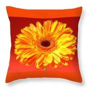 4183-001 Throw Pillow