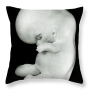 44 Day Old Human Embryo Throw Pillow