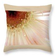 4598-2-2 Throw Pillow