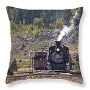 482 In Silverton Throw Pillow