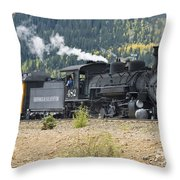 482 Round The Curve Throw Pillow