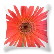 4961 Throw Pillow