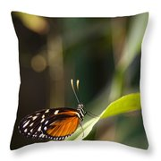 A Butterfly Rests On A Leaf Throw Pillow