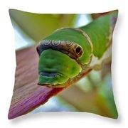 Big Green Caterpillar Throw Pillow