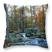 Big Hunting Creek Upstream From Cunningham Falls Throw Pillow
