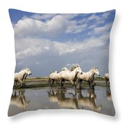 Camargue Horse Equus Caballus Group Throw Pillow
