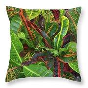 5- Croton Throw Pillow
