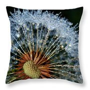 Dandelion With Dew Drops Throw Pillow