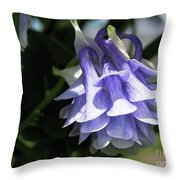 Double Columbine Named Light Blue Throw Pillow
