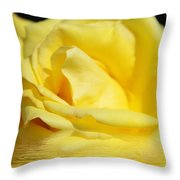 Floral Fractals And Floods Digital Art Throw Pillow