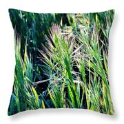 Grass In Bright Sunlight Throw Pillow