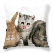 Kitten And Rabbits Throw Pillow