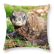 Komodo Dragon Throw Pillow