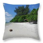 5- Marooned Throw Pillow