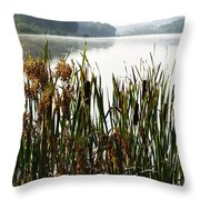 Misty Morning Big Ditch Lake Throw Pillow