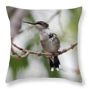 The Scrapper Throw Pillow