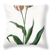 5 Tulip Tulip  Throw Pillow