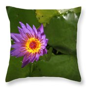 Waterlily Opening Part Of A Series Throw Pillow